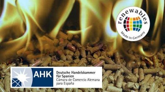 Jornada Redes de Climatización con Biomasa
