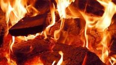 Estudio combustión de Gaiker