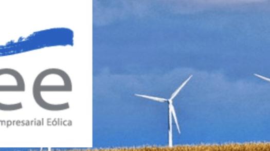 La Asociación Empresarial Eólica premia al Gobierno Vasco por su tarea en el impulso de este sector