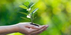 DOWN ESPAÑA y BAXI sensibilizarán sobre hábitos para el cuidado del medio ambiente