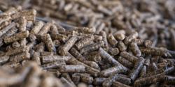 La biomasa como combustible de calefacción evitó las emisiones de 2,6 millones de vehículos