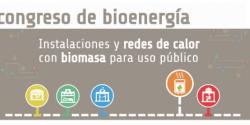 Congreso Instalaciones y redes de calor con Biomasa