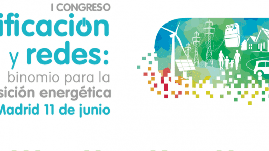 I Congreso aelec. Conclusiones