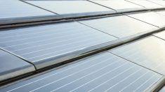 detalle teja solar la escandella