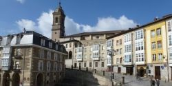 red de calor con biomasa en Vitoria
