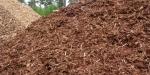 Astilla para usos térmicos: un biocombustible en crecimiento