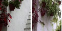 humedades-rehabilitacion-de-muros