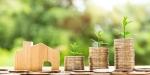 ASEFAVE apuesta por un IVA verde para conseguir la neutralidad de emisiones en 2050