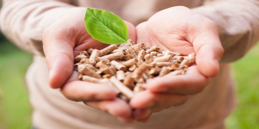 83 fábricas de pellet en España con capacidad de casi 2 millones de toneladas anuales