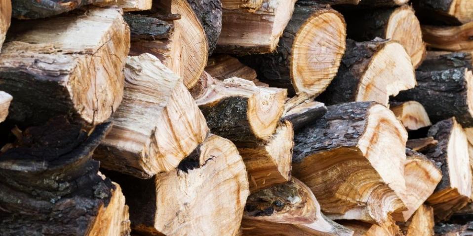 manual-actualizado-biomasud