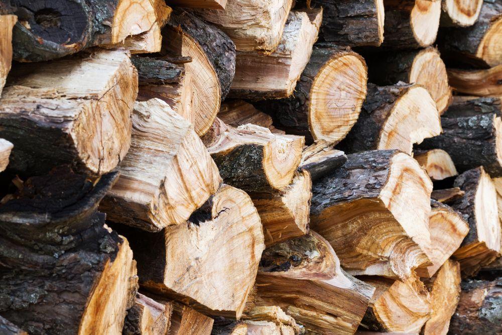 El manual actualizado de Biomasud incluye nuevas biomasas, entre otras novedades