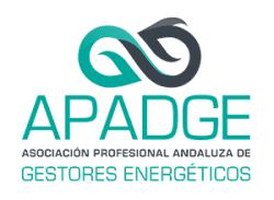 apadge logo