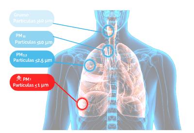 particulas contaminacion aire inhaladas