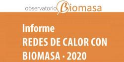 redes de calor con biomasa informe