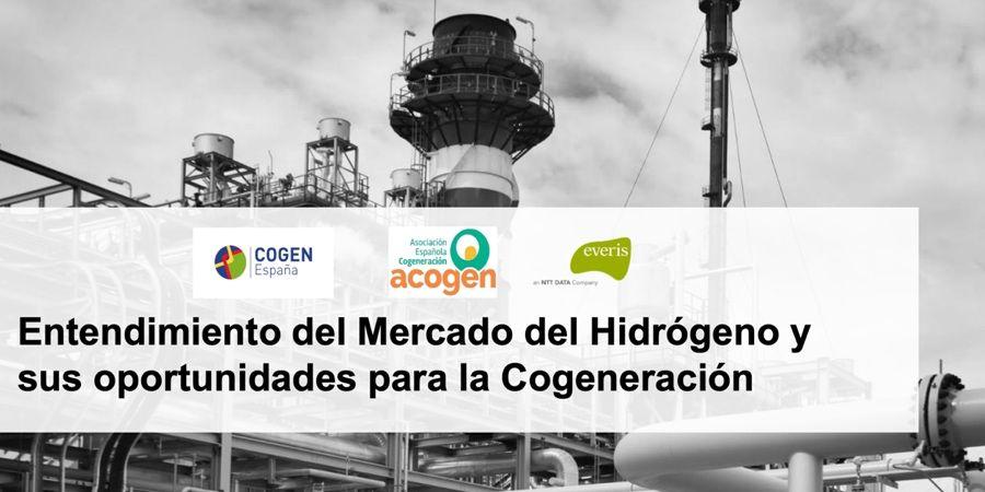 Jornada de ACOGEN para presentar el estudio sobre el mercado de hidrógeno y sus oportunidades para la cogeneración