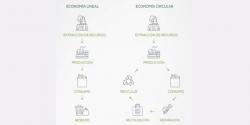 plan-innovacion-tecnologia-investigacion-ariston