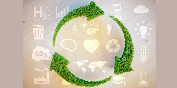 cuidado-medioambiental-ods